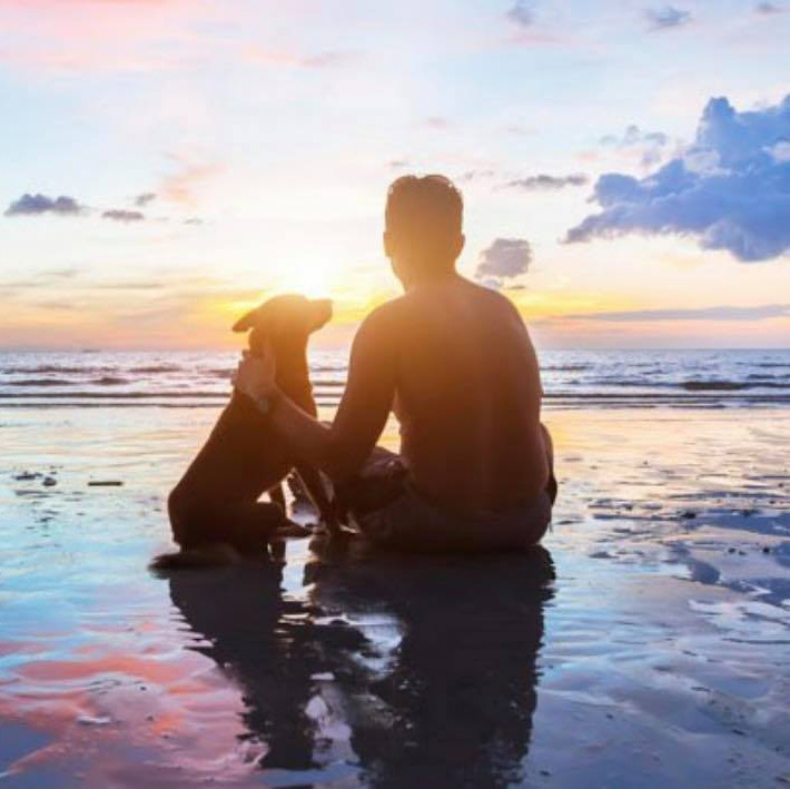 bg my best friend vet pet euthanasia